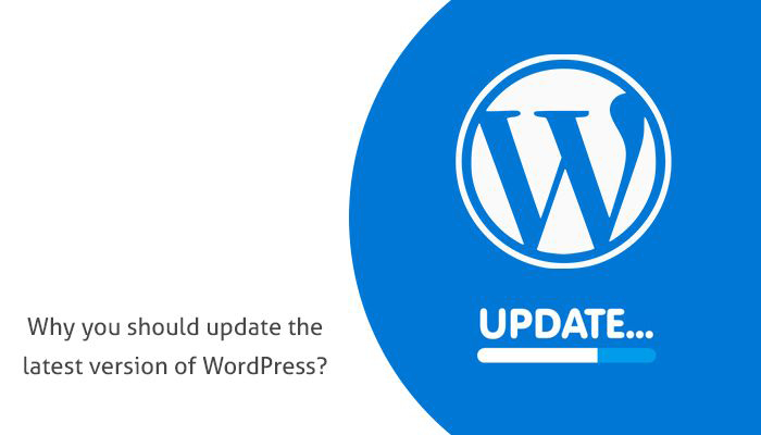 Why you should update the latest version of WordPress?